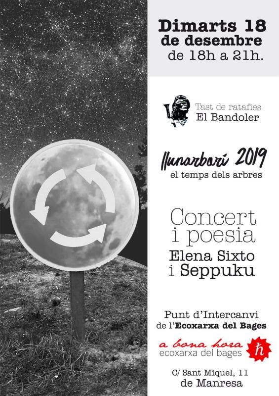 Cartell Concert i Poesia dimarts 18 de desembre de 2018